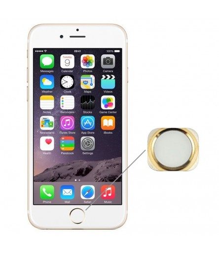 TASTO HOME PER APPLE IPHONE 6 GOLD PULSANTE CENTRALE TASTINO