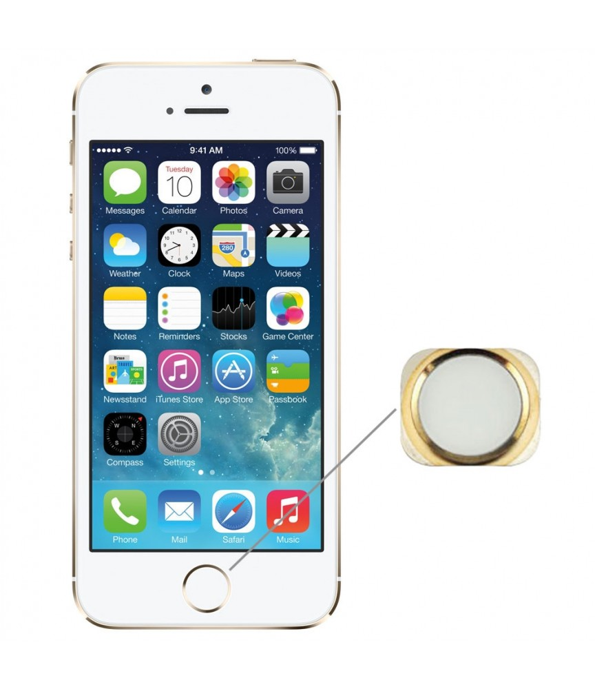 RICAMBI IPHONE | TASTO HOME NUOVO PER APPLE IPHONE 5s GOLD